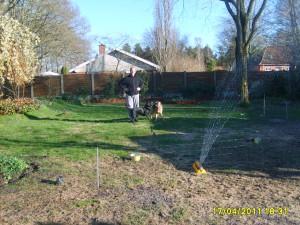 Farlige hunde April 2011