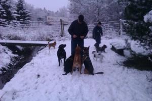 Hundeskoven og Arne med godbidder December 2011