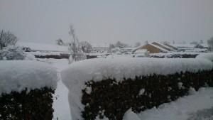 Sne søndag morgen