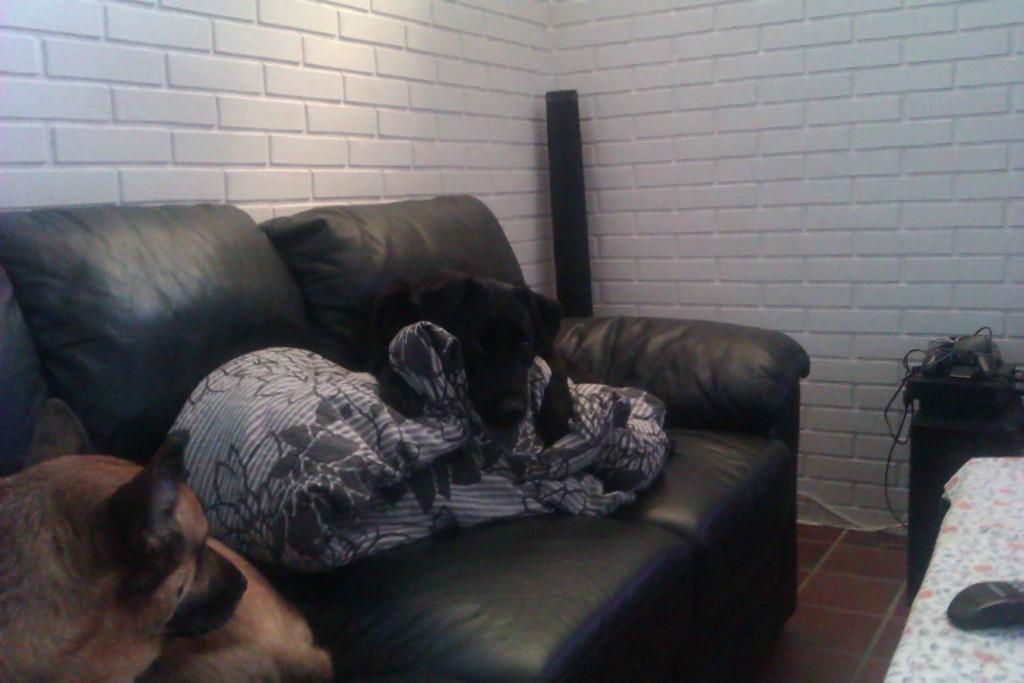 Vores sofa og min dyne