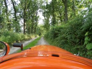 Skulle-have-taget-vejen