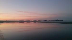 Stranden mod Strandby