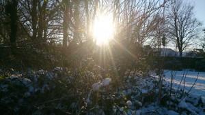 Sne Sol og minusgrader 17-1-2016