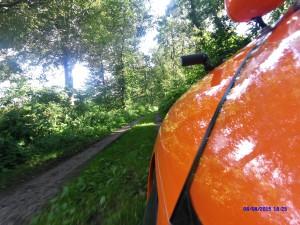 Strada i skoven Tyskland