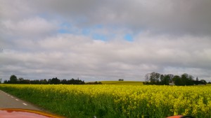 Strada langs gule marker