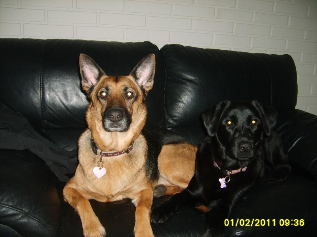 Vores sofa Februar 2011